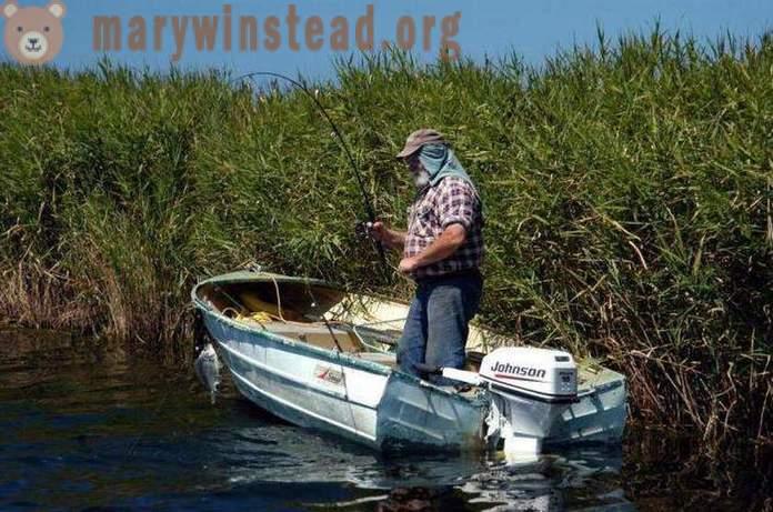 Συνδέστε το ψάρεμα AZ